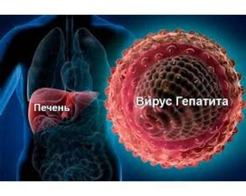 Вірусний гепатит А та його профілактика