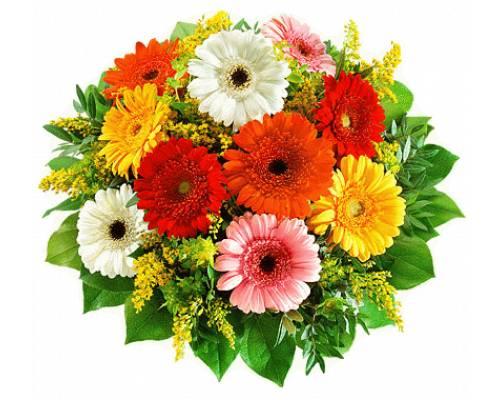 1 жовтня - Міжнародний день людей похилого віку та День ветеранів
