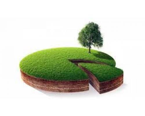 Неоформлене землекористування? Готуйтесь відшкодувати збитки через суд.